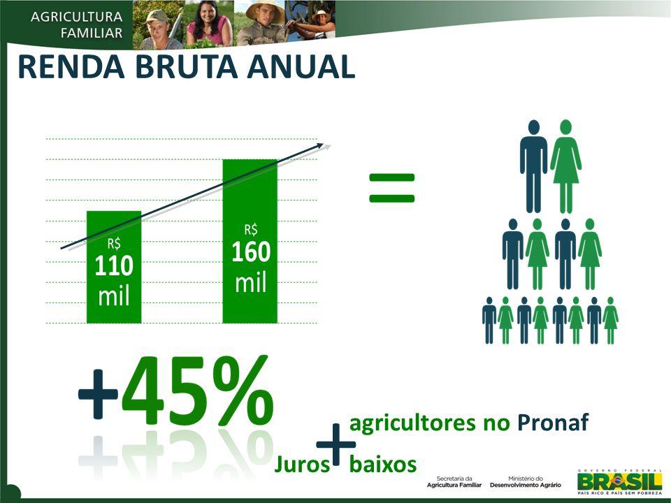 = + RENDA BRUTA ANUAL agricultores no Pronaf Juros baixos 3