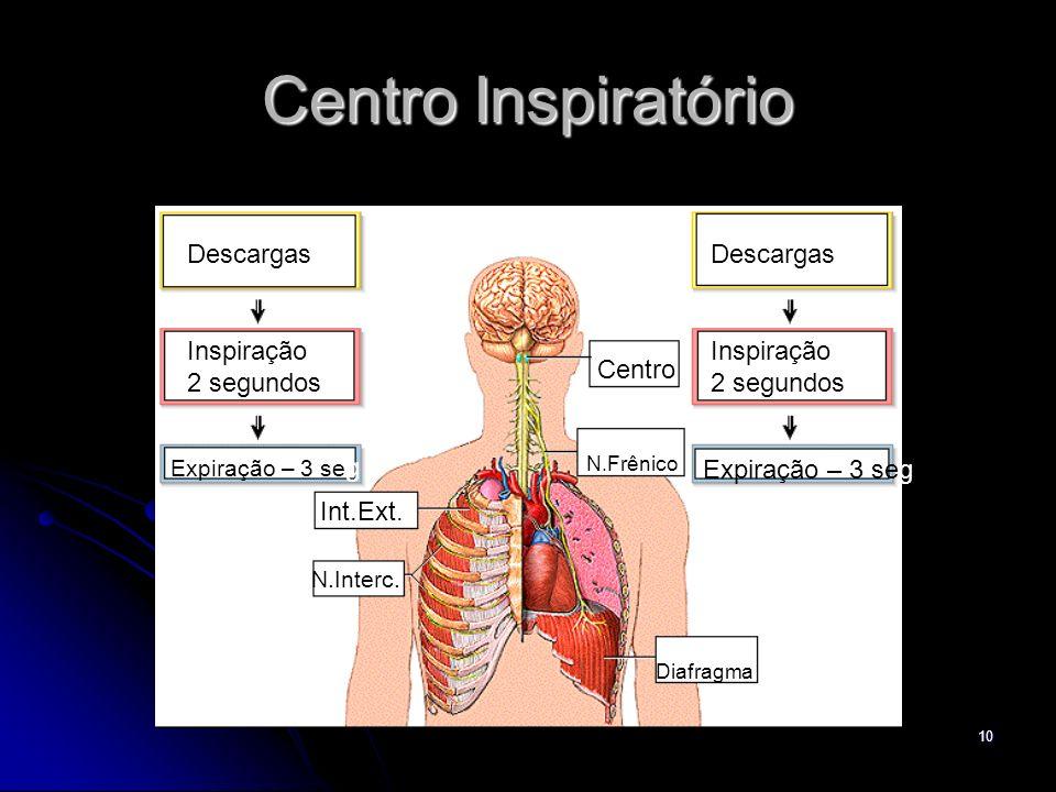 Centro Inspiratório Descargas Descargas Inspiração 2 segundos