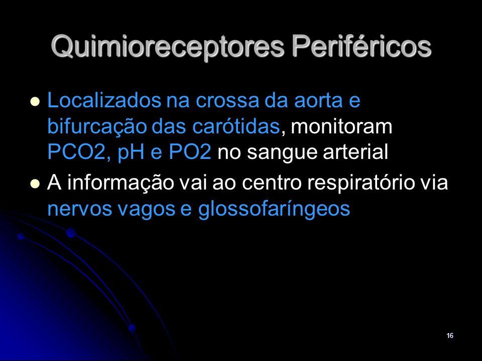 Quimioreceptores Periféricos