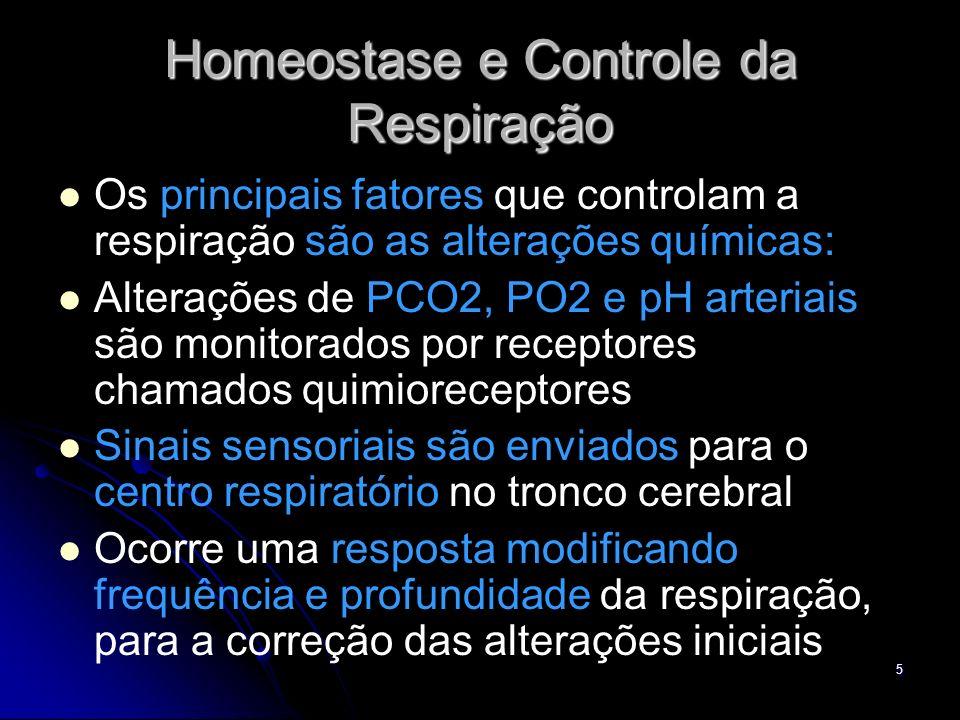 Homeostase e Controle da Respiração