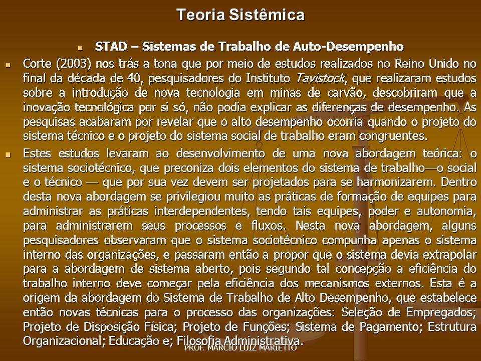 Teoria Sistêmica STAD – Sistemas de Trabalho de Auto-Desempenho