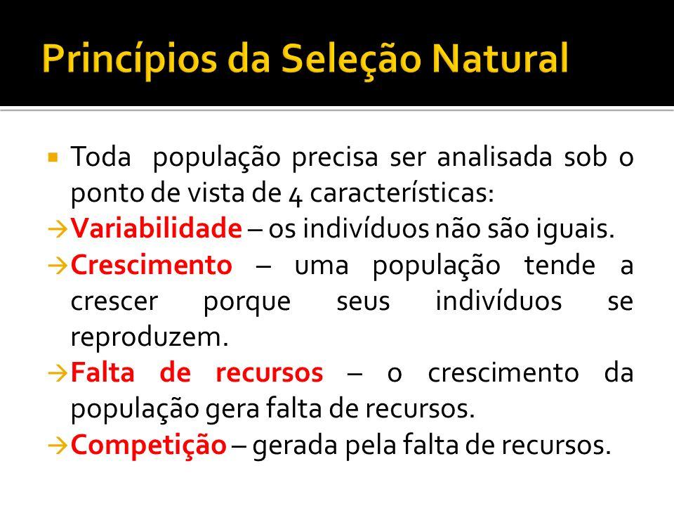 Princípios da Seleção Natural