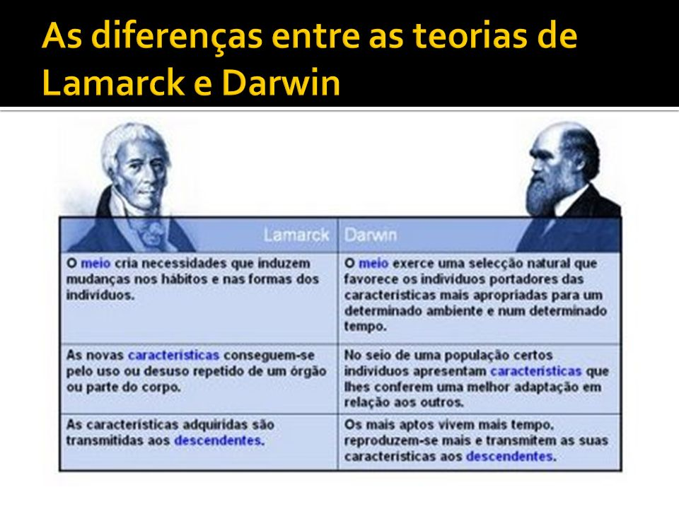 As diferenças entre as teorias de Lamarck e Darwin