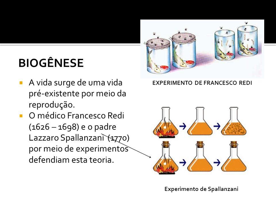 Experimento de Francesco Redi Experimento de Spallanzani
