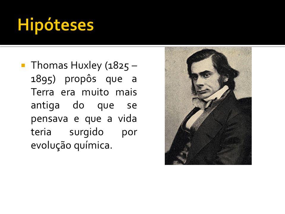 Hipóteses Thomas Huxley (1825 – 1895) propôs que a Terra era muito mais antiga do que se pensava e que a vida teria surgido por evolução química.