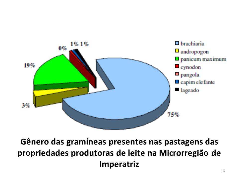 Gênero das gramíneas presentes nas pastagens das propriedades produtoras de leite na Microrregião de Imperatriz