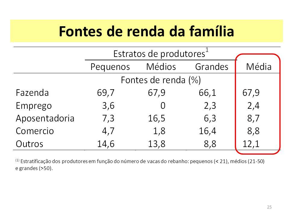 Fontes de renda da família