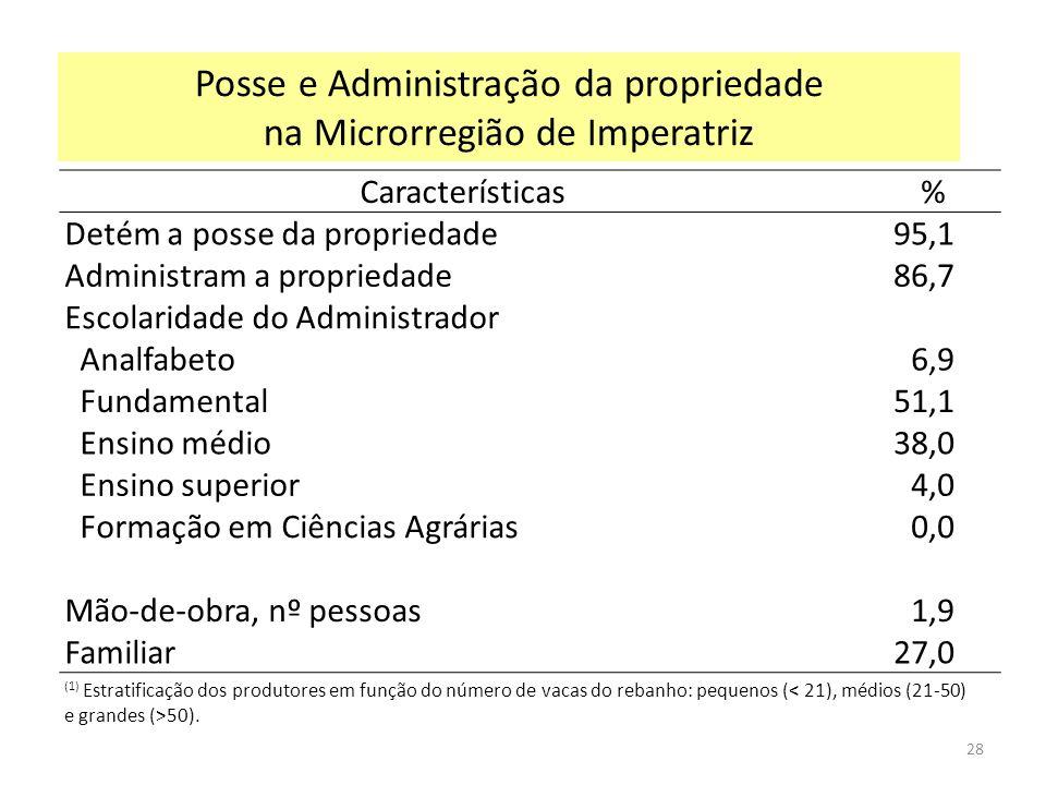 Posse e Administração da propriedade na Microrregião de Imperatriz