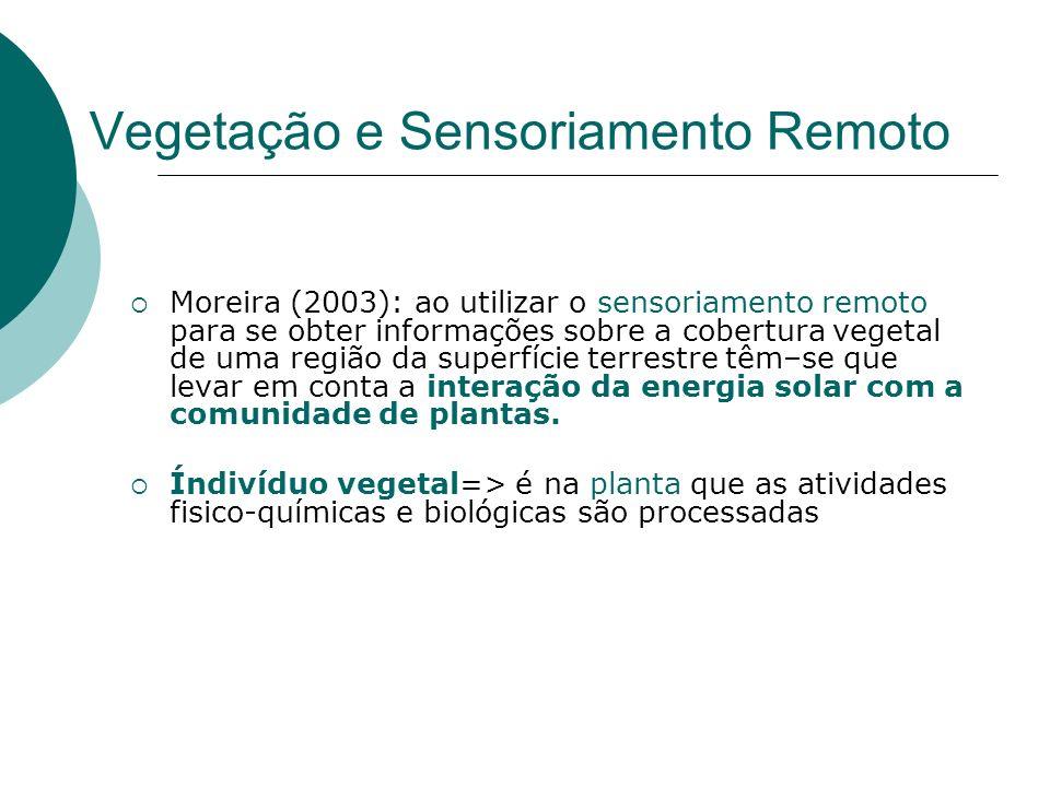Vegetação e Sensoriamento Remoto