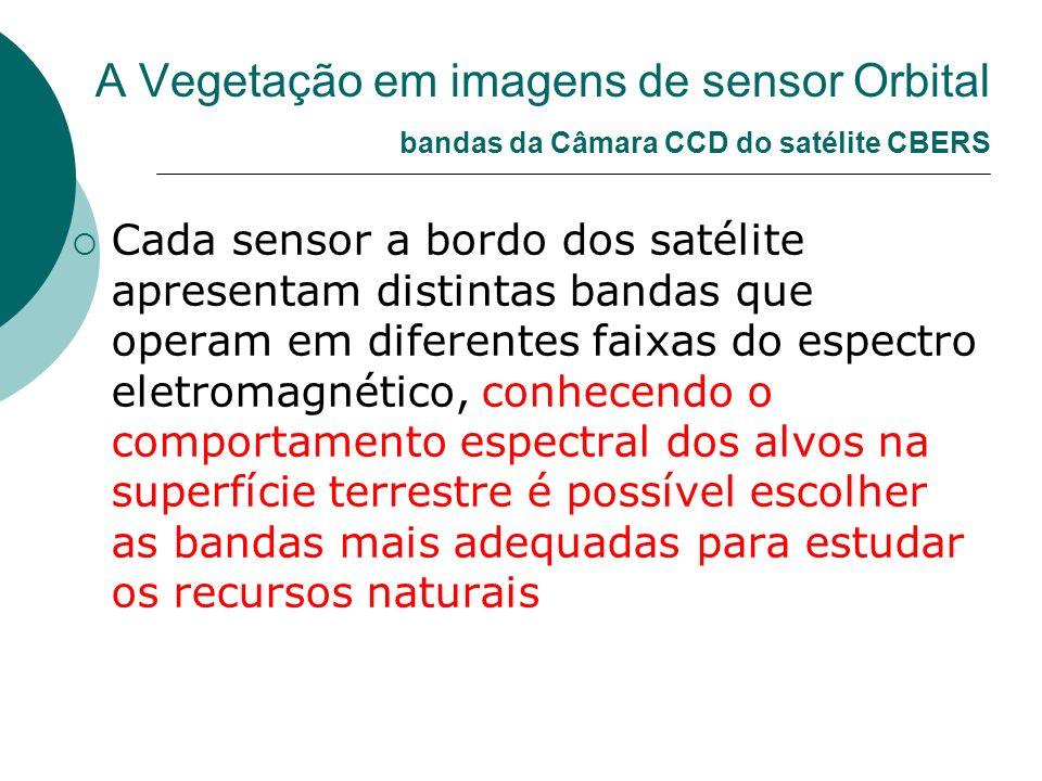 A Vegetação em imagens de sensor Orbital bandas da Câmara CCD do satélite CBERS