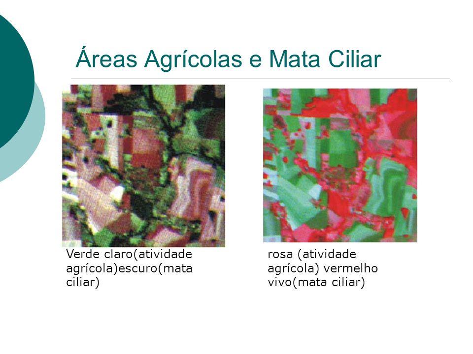 Áreas Agrícolas e Mata Ciliar