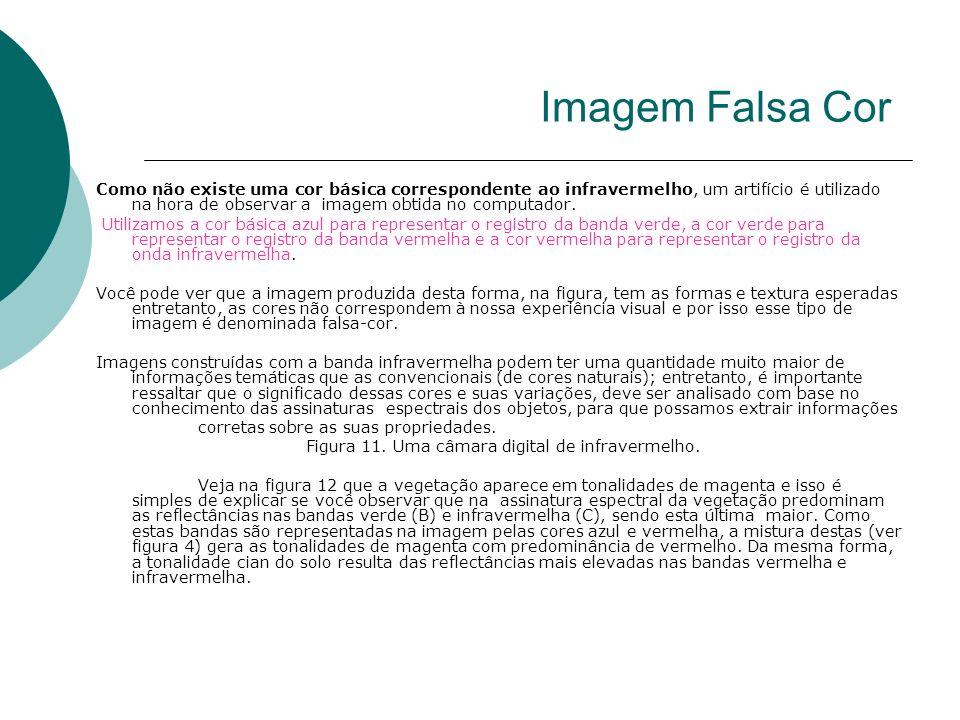 Imagem Falsa Cor
