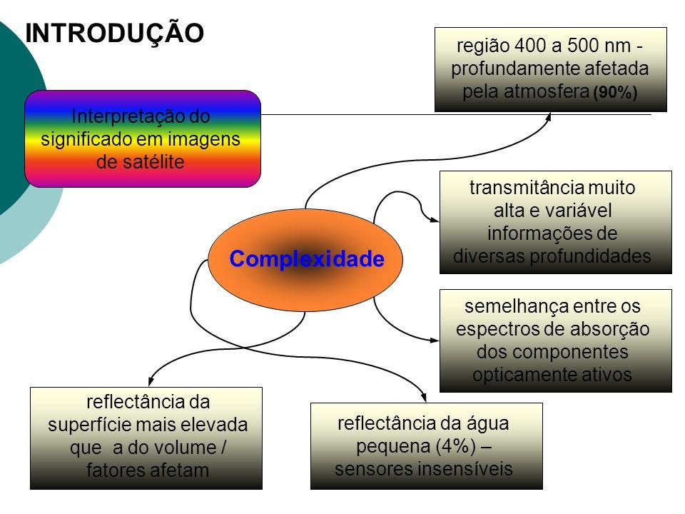 INTRODUÇÃO Complexidade