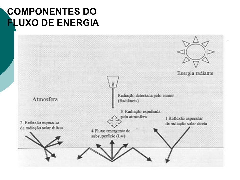 COMPONENTES DO FLUXO DE ENERGIA