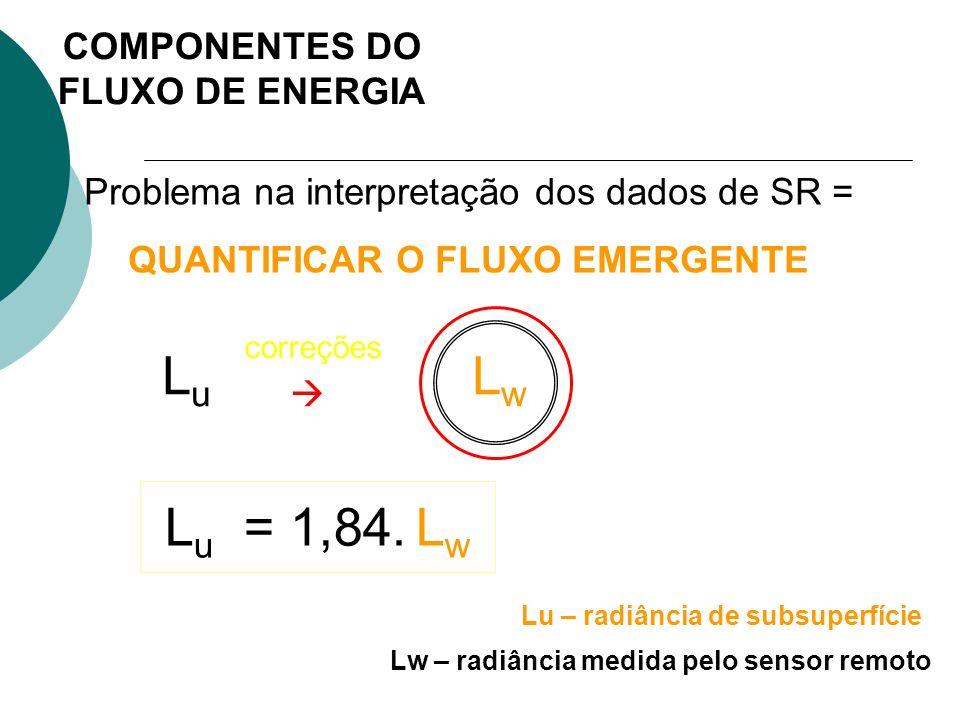 Lu  Lw Lu = 1,84. Lw COMPONENTES DO FLUXO DE ENERGIA