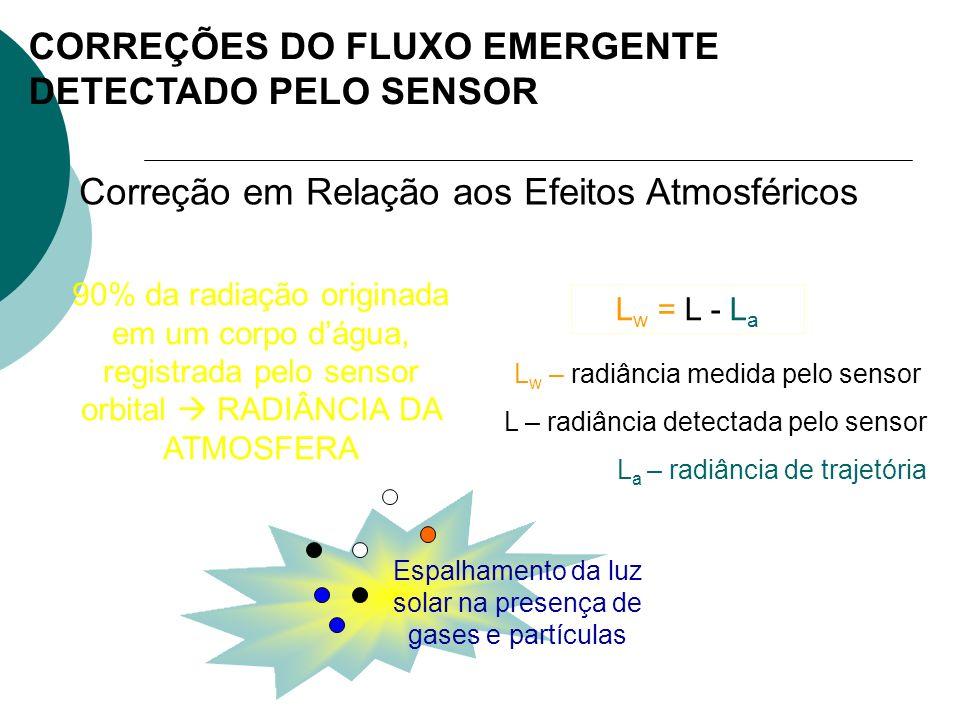 CORREÇÕES DO FLUXO EMERGENTE DETECTADO PELO SENSOR