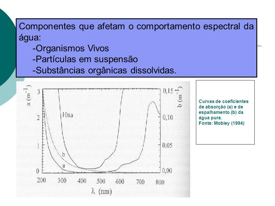 Componentes que afetam o comportamento espectral da água: