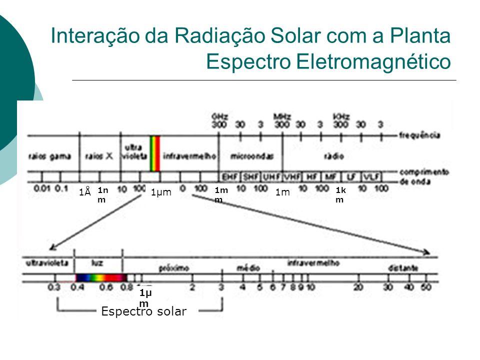 Interação da Radiação Solar com a Planta Espectro Eletromagnético
