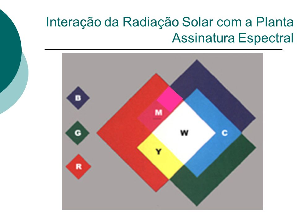 Interação da Radiação Solar com a Planta Assinatura Espectral