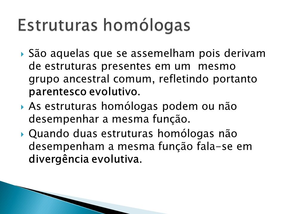 Estruturas homólogas