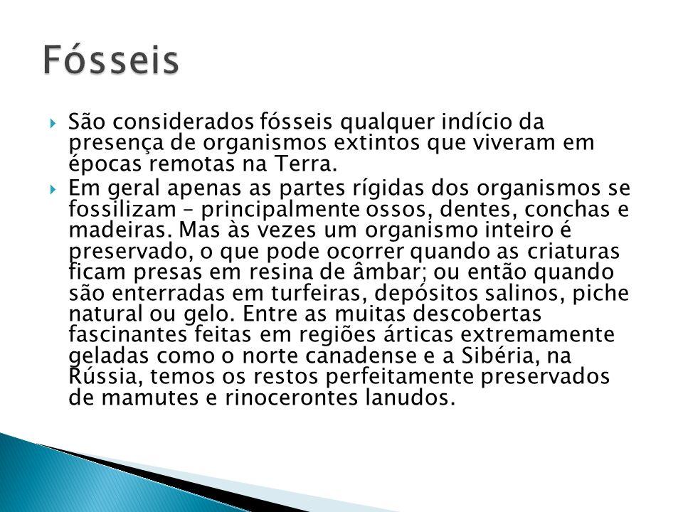 Fósseis São considerados fósseis qualquer indício da presença de organismos extintos que viveram em épocas remotas na Terra.