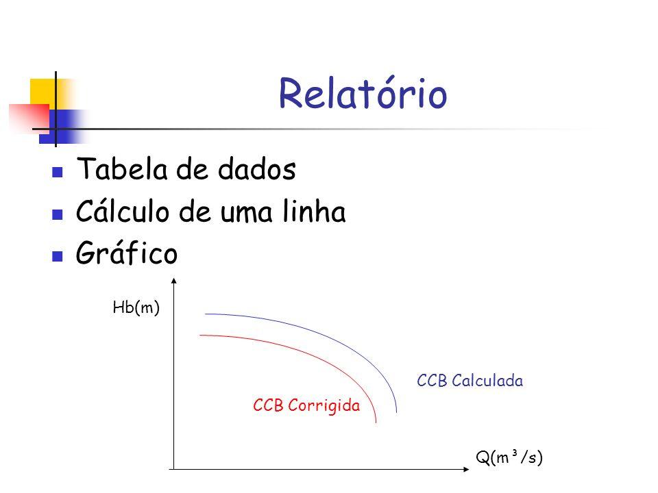 Relatório Tabela de dados Cálculo de uma linha Gráfico Hb(m)