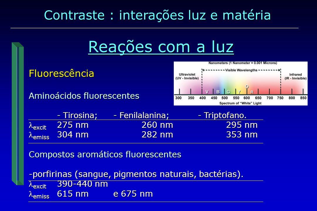 Reações com a luz Contraste : interações luz e matéria Fluorescência