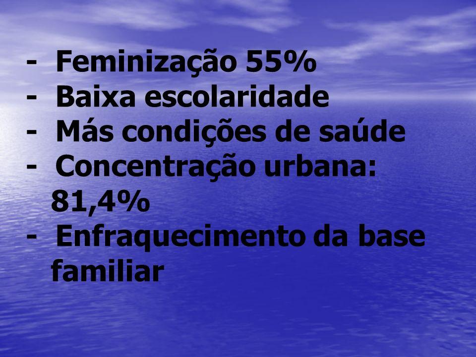 - Feminização 55% - Baixa escolaridade. - Más condições de saúde. - Concentração urbana: 81,4%