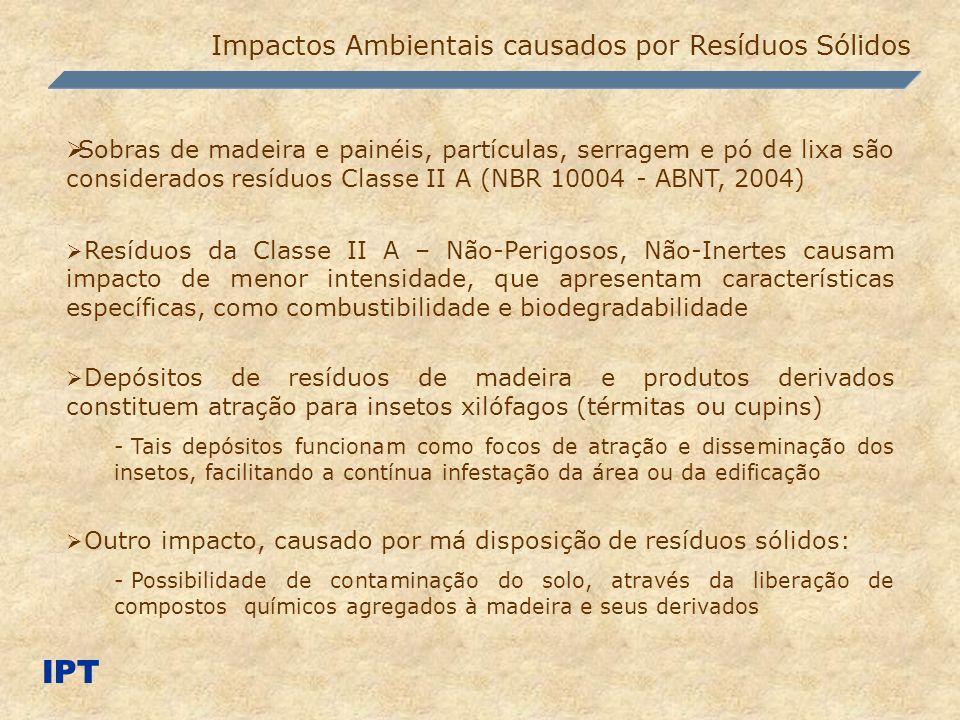 IPT Impactos Ambientais causados por Resíduos Sólidos