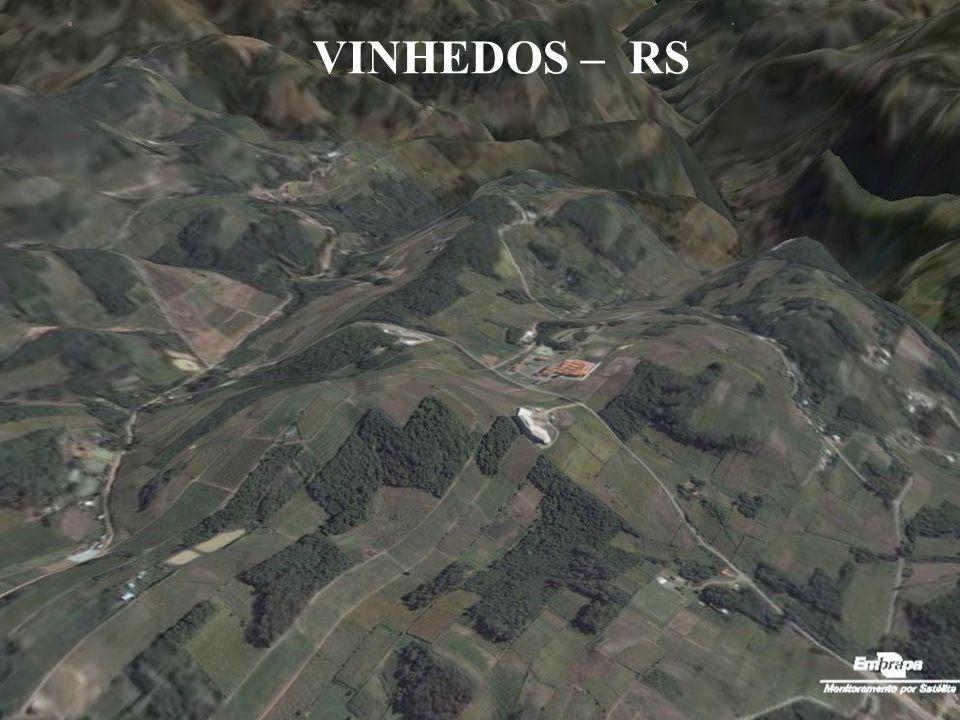 VINHEDOS – RS