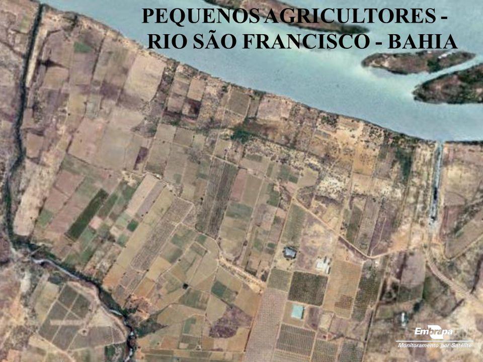 PEQUENOS AGRICULTORES -