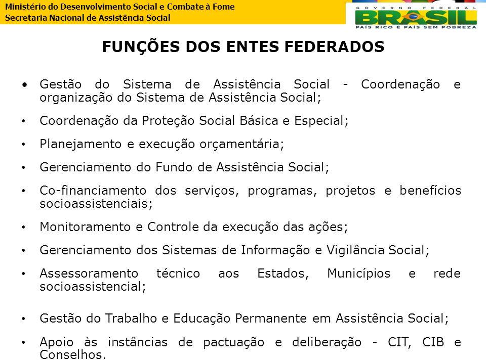 FUNÇÕES DOS ENTES FEDERADOS
