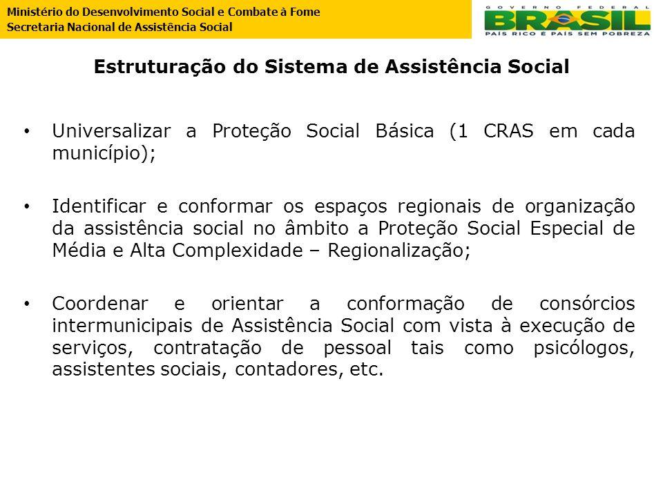Estruturação do Sistema de Assistência Social