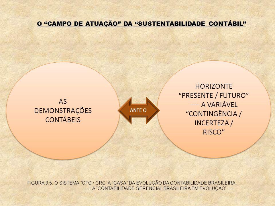 DEMONSTRAÇÕES CONTÁBEIS HORIZONTE PRESENTE / FUTURO