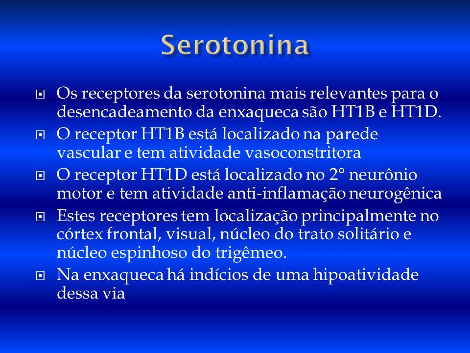 SerotoninaOs receptores da serotonina mais relevantes para o desencadeamento da enxaqueca são HT1B e HT1D.