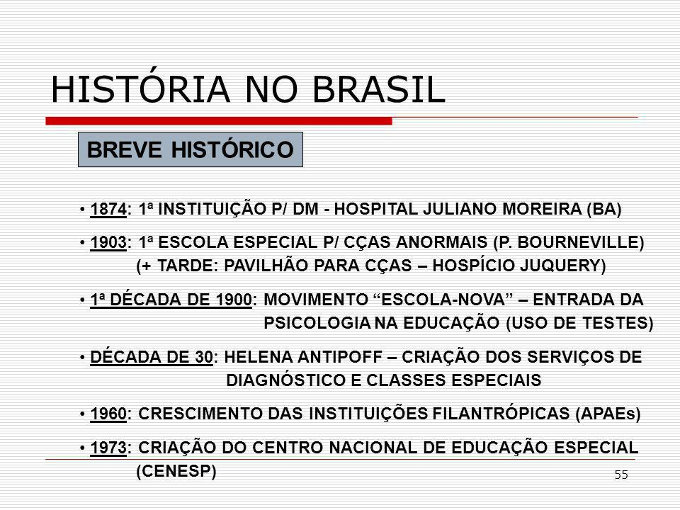 HISTÓRIA NO BRASIL BREVE HISTÓRICO