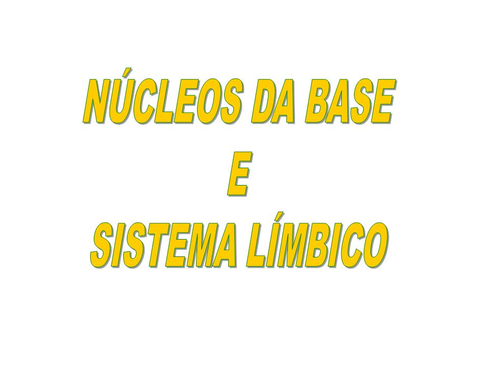 NÚCLEOS DA BASE E SISTEMA LÍMBICO