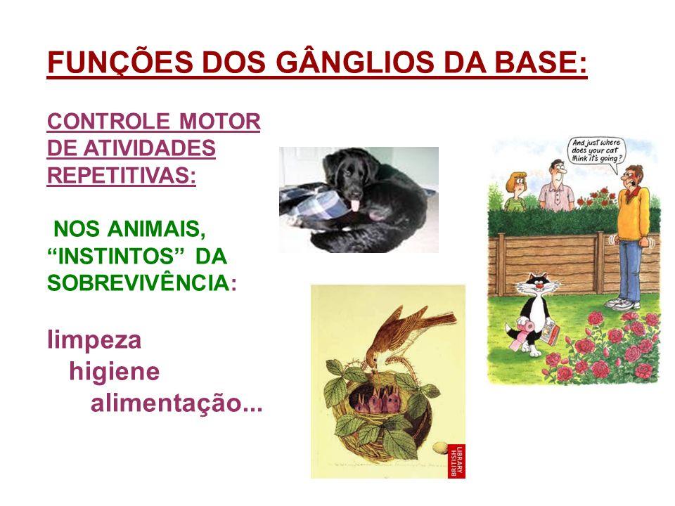 FUNÇÕES DOS GÂNGLIOS DA BASE: