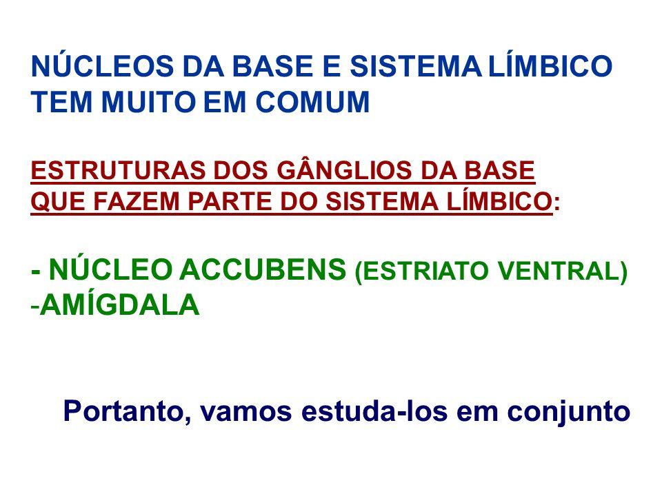 NÚCLEOS DA BASE E SISTEMA LÍMBICO TEM MUITO EM COMUM