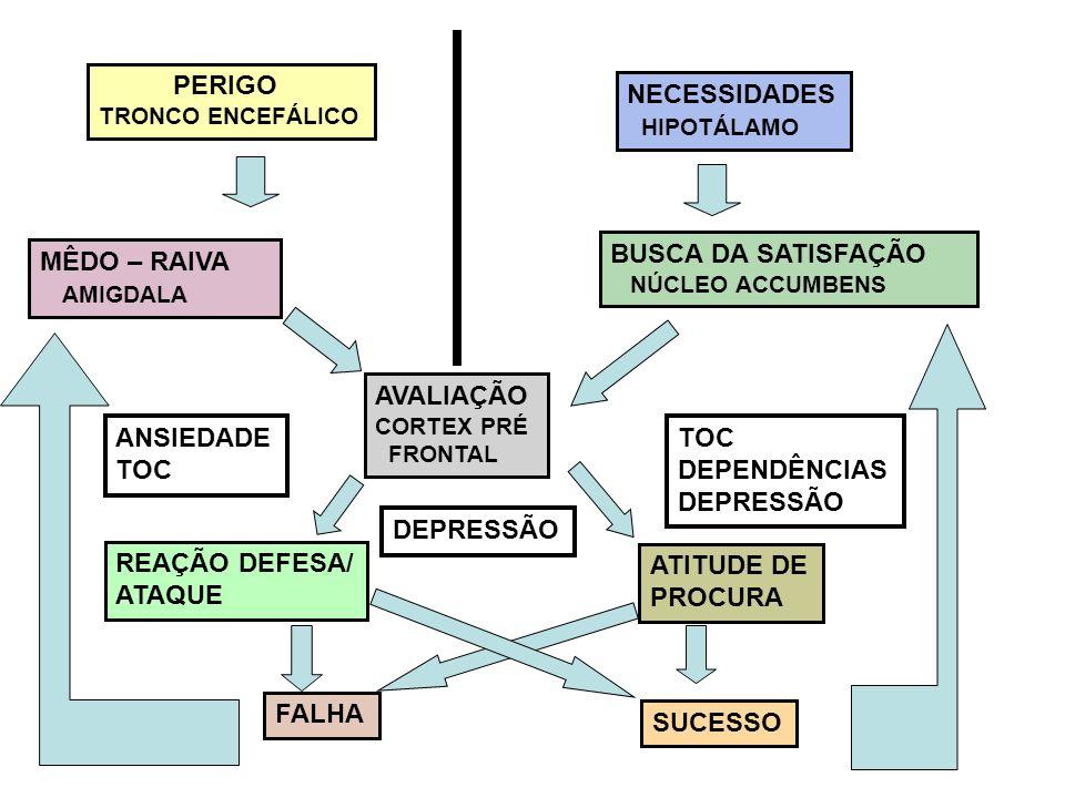 PERIGO NECESSIDADES HIPOTÁLAMO BUSCA DA SATISFAÇÃO MÊDO – RAIVA