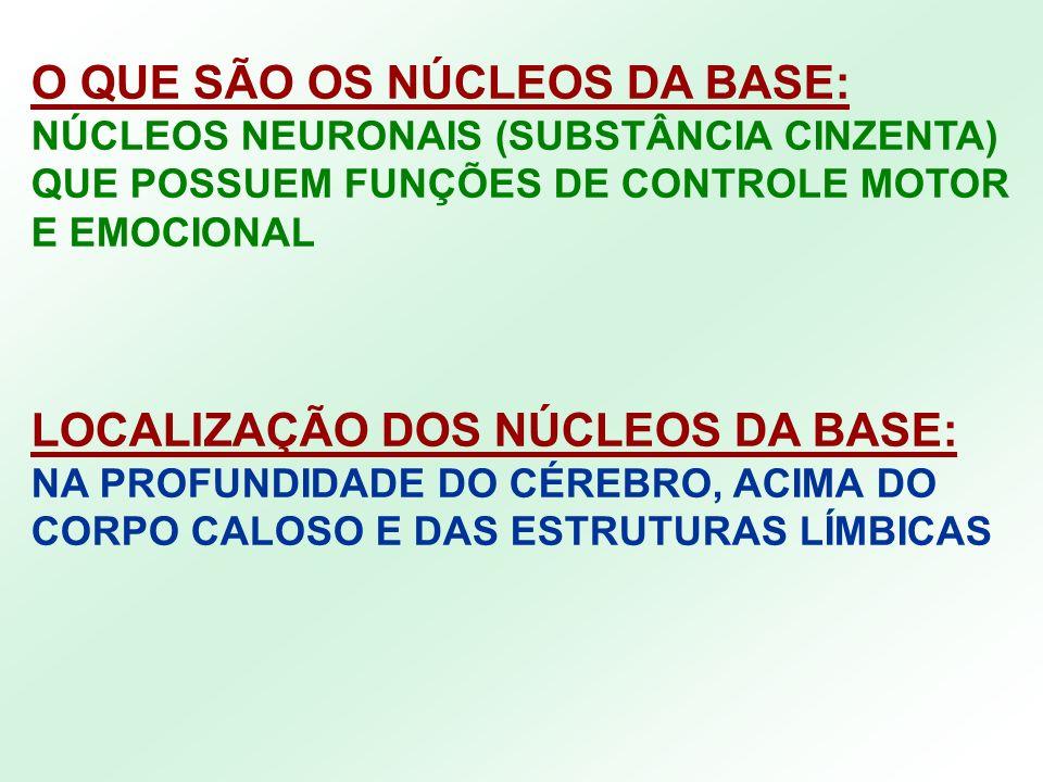 O QUE SÃO OS NÚCLEOS DA BASE: