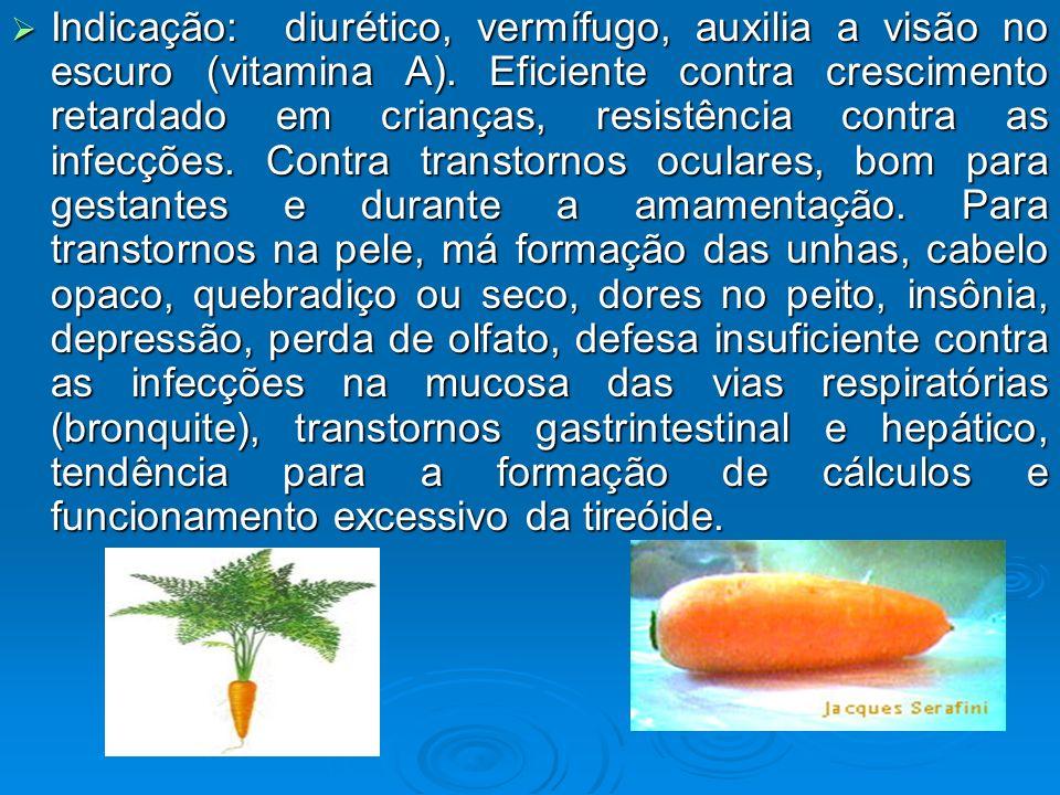 Indicação: diurético, vermífugo, auxilia a visão no escuro (vitamina A).