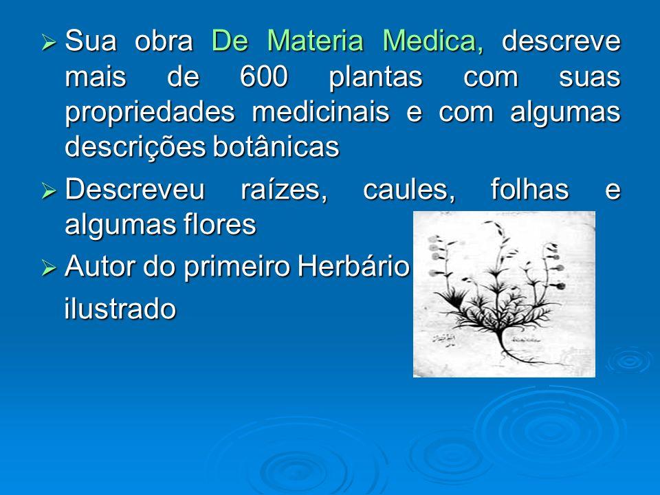 Sua obra De Materia Medica, descreve mais de 600 plantas com suas propriedades medicinais e com algumas descrições botânicas