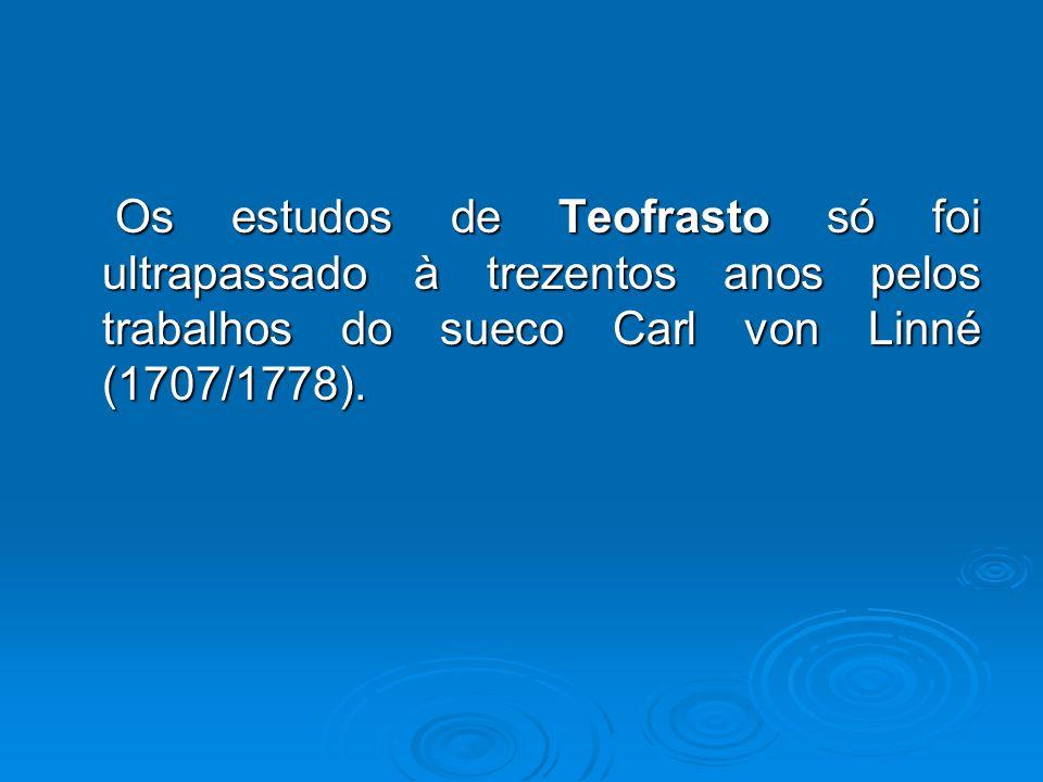 Os estudos de Teofrasto só foi ultrapassado à trezentos anos pelos trabalhos do sueco Carl von Linné (1707/1778).