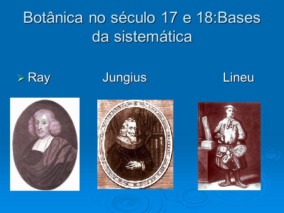 Botânica no século 17 e 18:Bases da sistemática