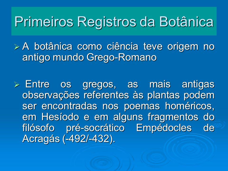 Primeiros Registros da Botânica