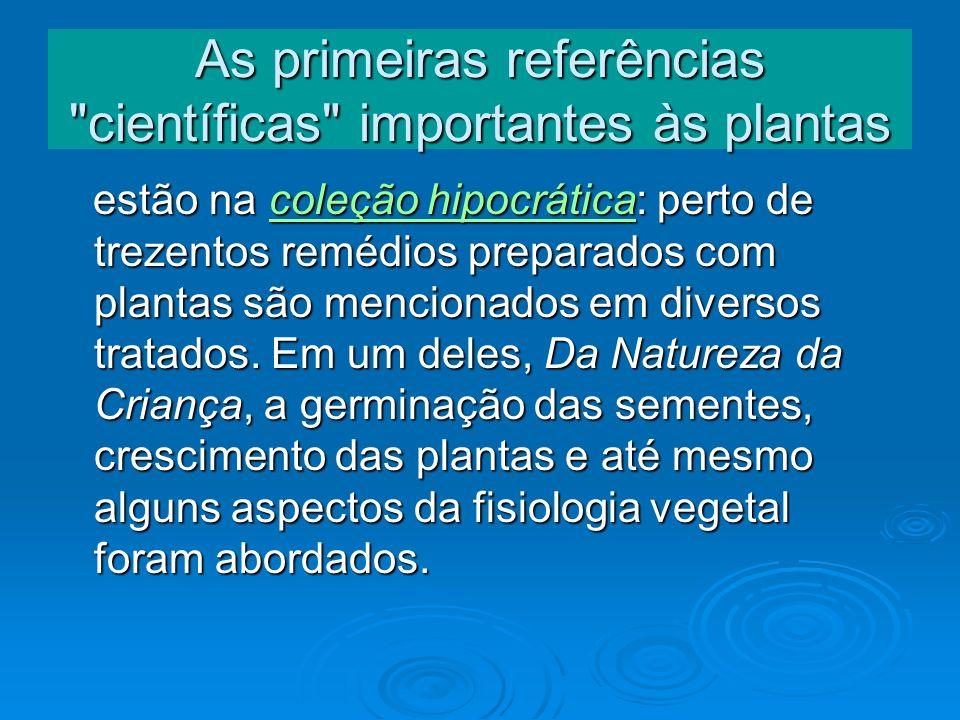 As primeiras referências científicas importantes às plantas