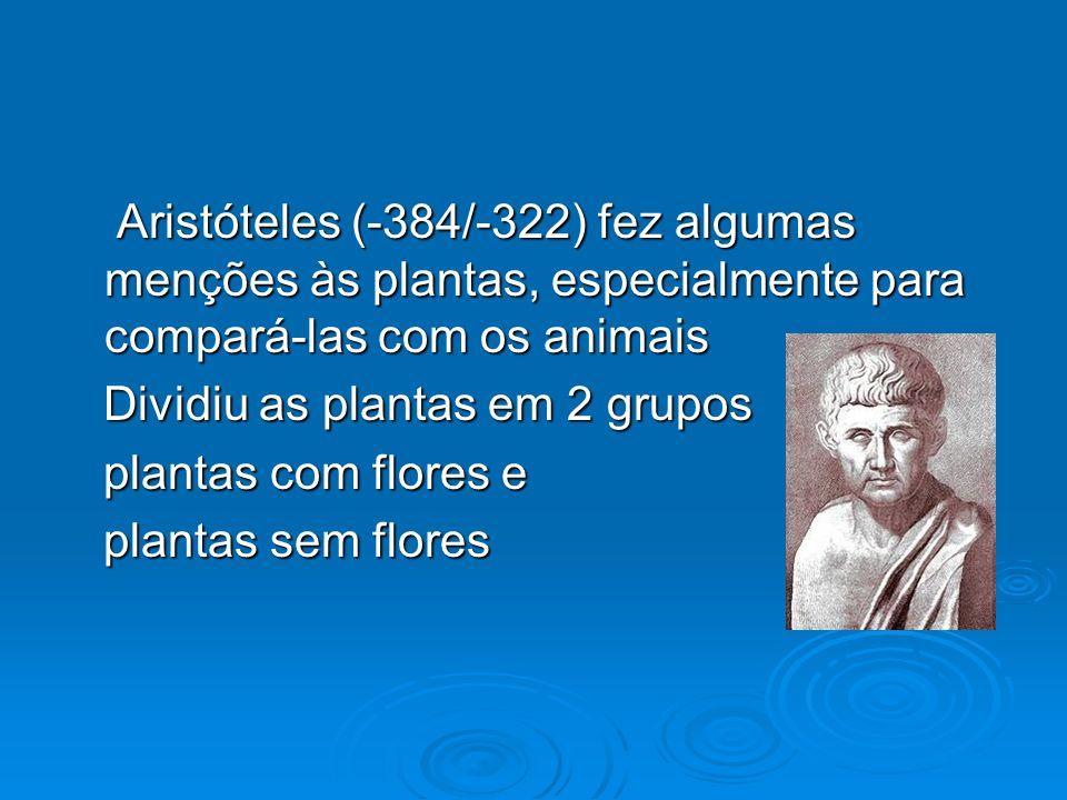 Aristóteles (-384/-322) fez algumas menções às plantas, especialmente para compará-las com os animais