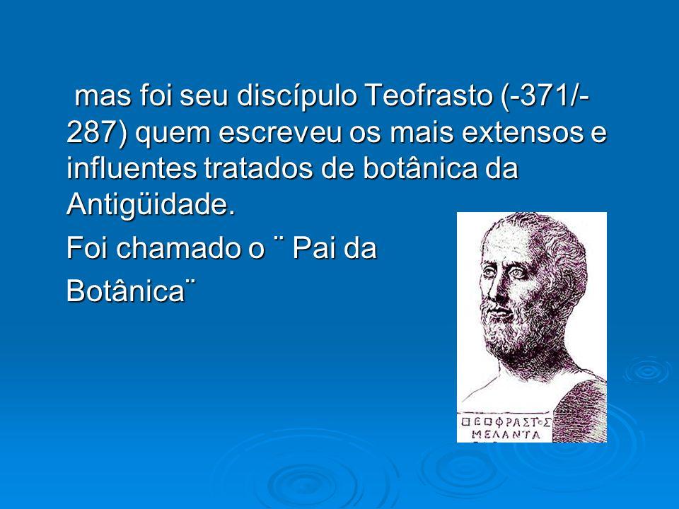 mas foi seu discípulo Teofrasto (-371/-287) quem escreveu os mais extensos e influentes tratados de botânica da Antigüidade.