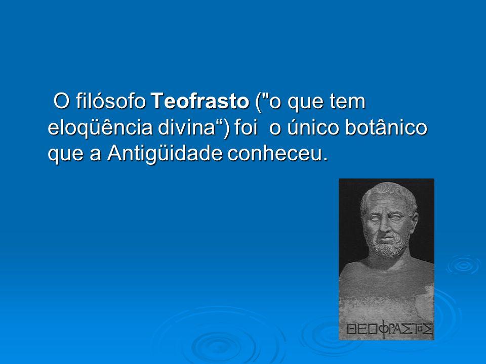O filósofo Teofrasto ( o que tem eloqüência divina ) foi o único botânico que a Antigüidade conheceu.
